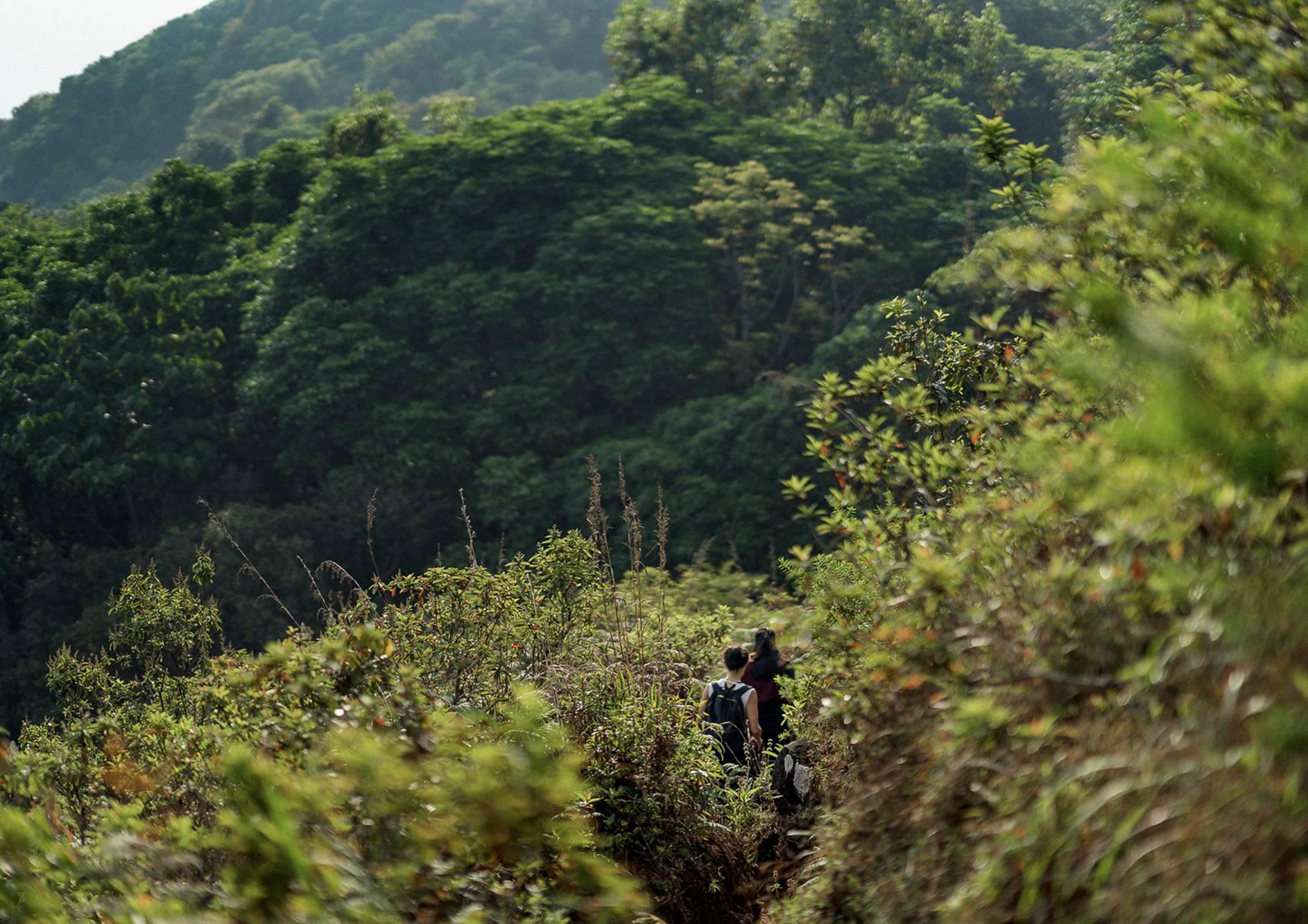 The-Tamara-Nature-Trails-1